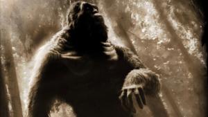 Bigfoot Sightings Of Vietnam Strange Encounters With Rock Apes